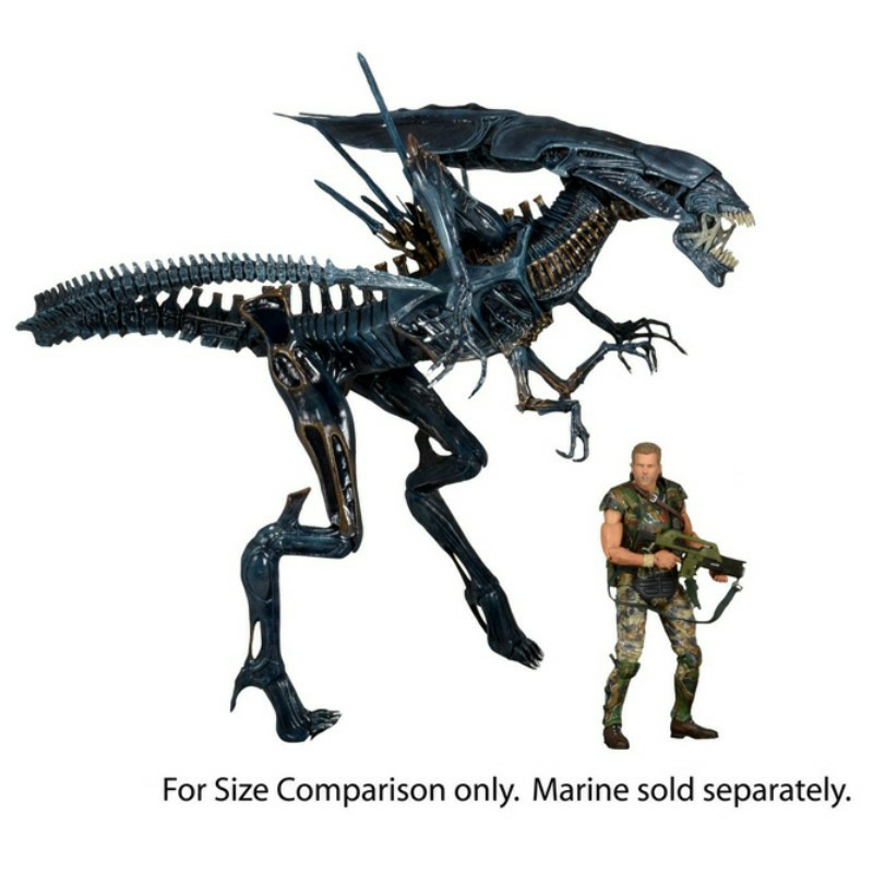 7 best images about Predalien on Pinterest